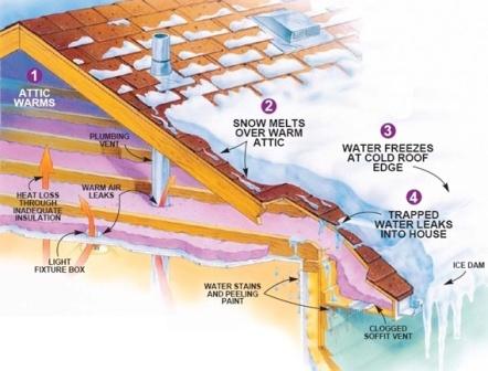 Ice Dam Cutaway